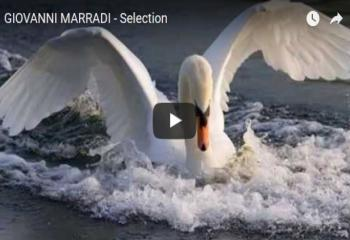 GIOVANNI MARRADI - Selection